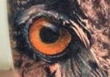 Owl tattoo by Alexander Romashev