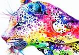 Leopard watercolor by Art Jongkie