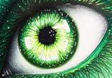 Green eye drawing by Bajan Art