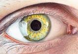 Eye dino drawing by Dino Tomic
