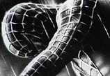 Spiderman drawing by Guilherme Silveira