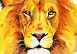 Lion watercolor painting by Jonathan Knight Art