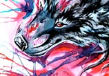 Dark wolf color drawing by Katy Lipscomb Art