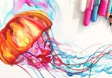 Jellyfish color drawing by Katy Lipscomb Art
