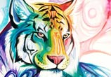 Spirit tiger color drawing by Katy Lipscomb Art