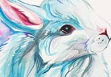 Winter bunny color drawing by Katy Lipscomb Art