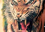 Badass tiger tattoo by Led Coult