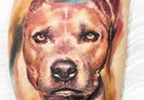 Dog tattoo by Led Coult