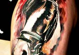 Horse head tattoo by Led Coult