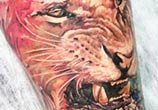Lion tattoo by Led Coult