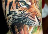 tiger tattoo by Led Coult