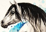Horse Watercolor by Louise Terrier