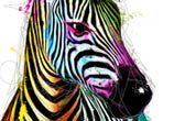 Zebra POP mixedmedia by Patrice Murciano