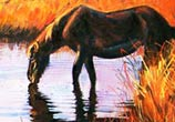A Horse acryl painting by Peter Zuffa Bodliak