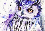 Secret owl watercolor painting by Pixie Cold
