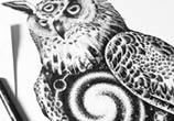 Space owl drawing by Sneaky Studios