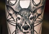 Dotwork deer tattoo by Timur Lysenko