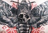 Moth with skull tattoo by Timur Lysenko