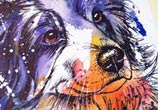 Border Collie watercolor painting by Tori Ratcliffe Art