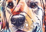 Golden Retriever watercolor painting by Tori Ratcliffe Art