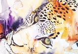Leopard in progress by Tori Ratcliffe Art