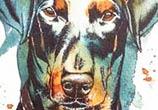 Max the Doberman by Tori Ratcliffe Art