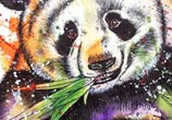 Panda by Tori Ratcliffe Art