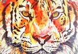 Tiger by Tori Ratcliffe Art