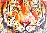 Tiger by Tori Ratcliffe Art