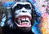 Monkey streetart by Wild Drawing