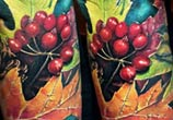 Nature and Insect tattoo by Zsofia Belteczky